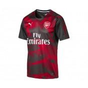 Maillot Pré Match Puma Arsenal Gris et Rouge