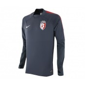 Training Top Pro Lille OSC Performance Shell Select Gris