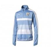 Training Top Uruguay Bleu